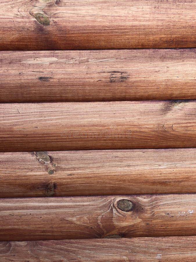 Mur en bois des logarithmes naturels photographie stock