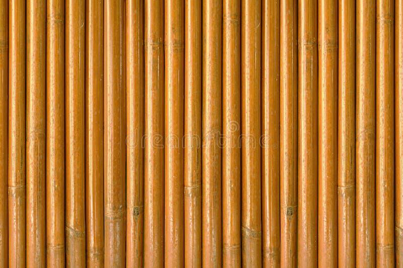 mur en bois des tiges en bambou s ches image stock image du couleur home 37657149. Black Bedroom Furniture Sets. Home Design Ideas
