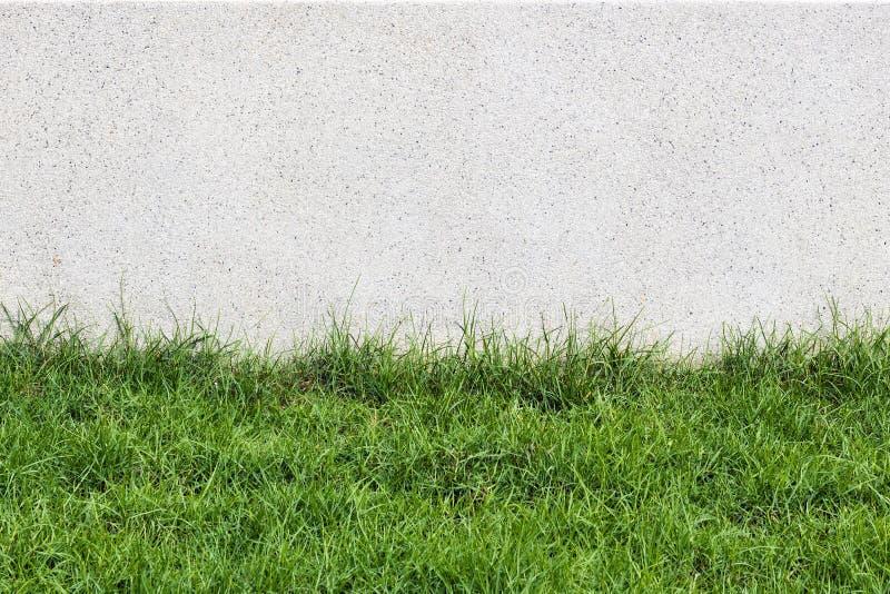 Mur En Pierre Et Flore Avec L\'herbe Dans La Décoration De ...