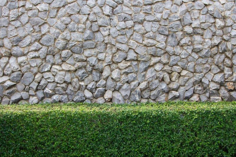 Mur en pierre et jardin d coratif images libres de droits for Mur decoratif jardin