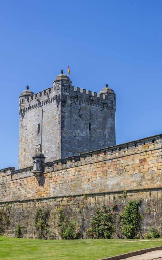 Mur enrichi du château de sommet dans mauvais Bentheim photos libres de droits