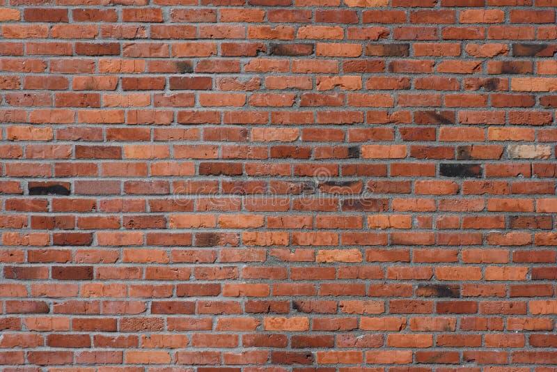 Mur extérieur de brique et de mortier photos libres de droits