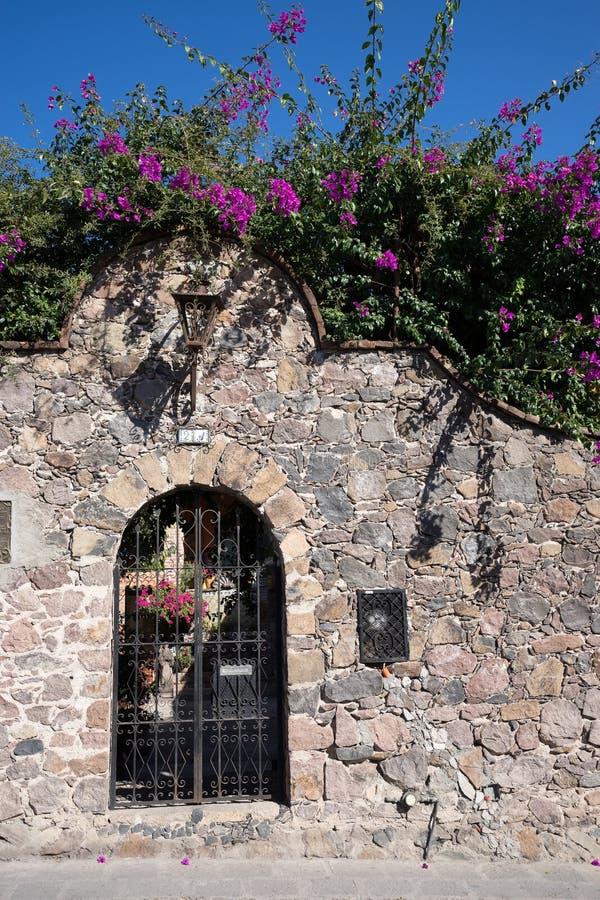 Mur mexicain de roche avec la fleur photos stock