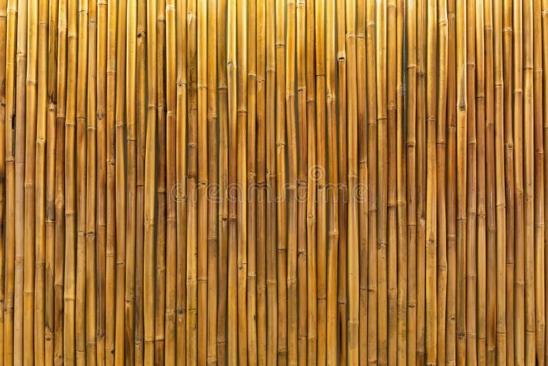 Mur Ou Panneau En Bambou D\'or Photo stock - Image du décor, japonais ...