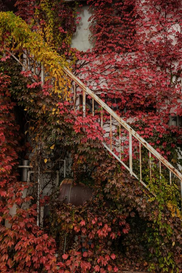 Mur rouge sur la vieille maison, ville de Matsumoto, Nagano, Japon photos libres de droits