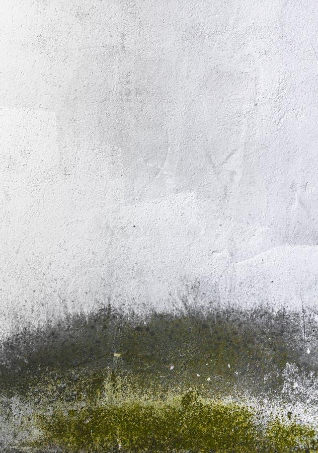 Mur sale avec le moule photographie stock