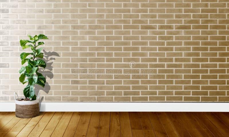 Mura di mattoni bianchi dorati con i pavimenti di legno ed albero con luce naturale per fotografia del fondo fotografia stock