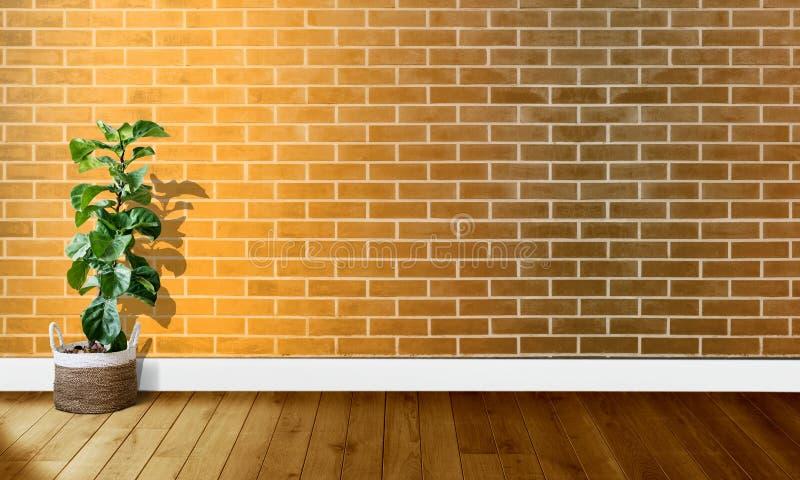 Mura di mattoni gialli dorati con i pavimenti di legno ed albero con luce naturale per fotografia del fondo fotografia stock libera da diritti