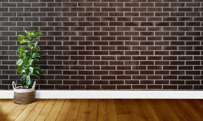 Mura di mattoni marroni neri con i pavimenti di legno ed albero con luce naturale per fotografia del fondo fotografia stock