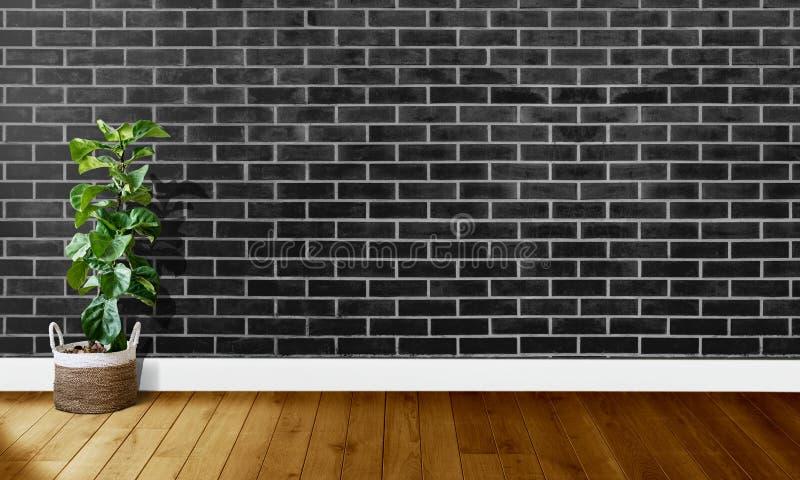 Mura di mattoni neri con i pavimenti di legno ed albero con luce naturale per fotografia del fondo immagini stock