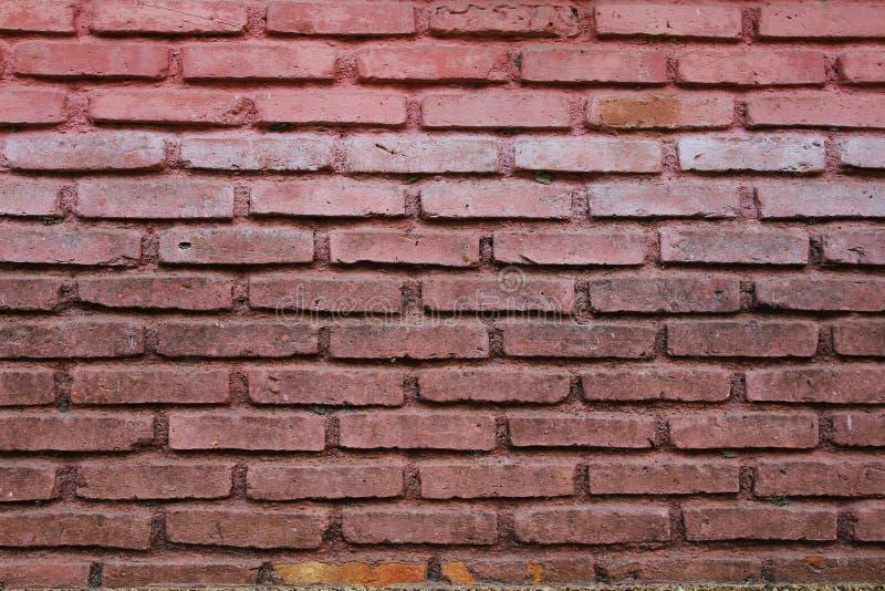 Mura di mattoni unici sul fondo della parete fotografie stock libere da diritti