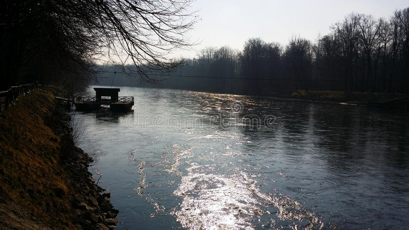 Mura river. Untouched nature by the river Mura in Slovenia in winter royalty free stock photos