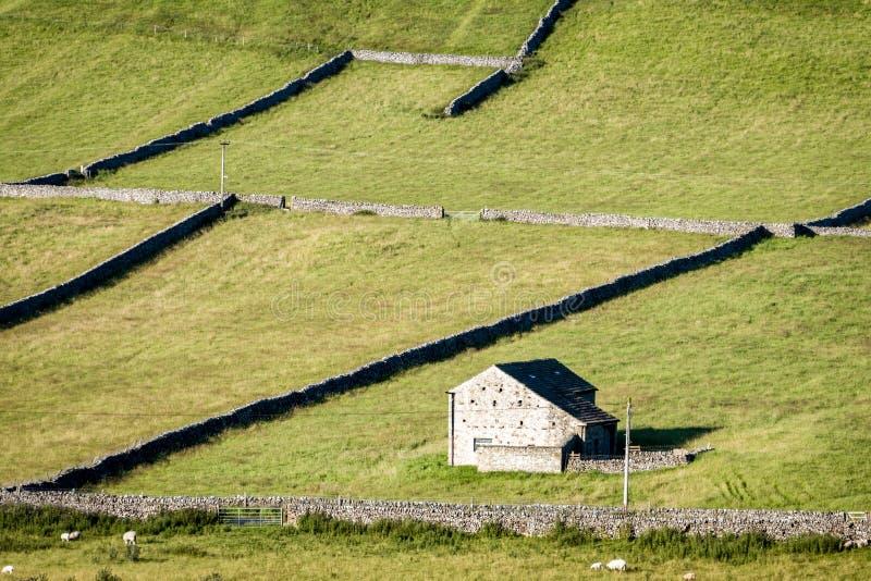 Mura a secchi e granai - vallate di Yorkshire, Inghilterra, immagine stock