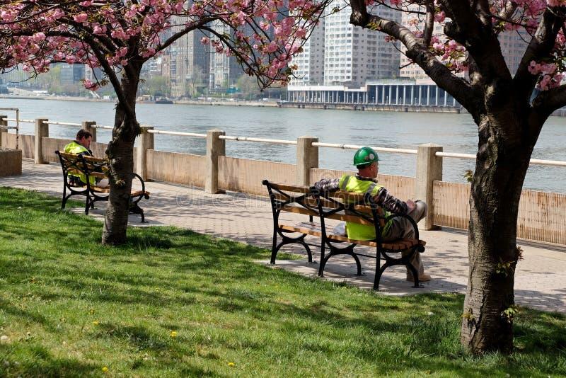Muratori in un parco durante il pranzo immagini stock