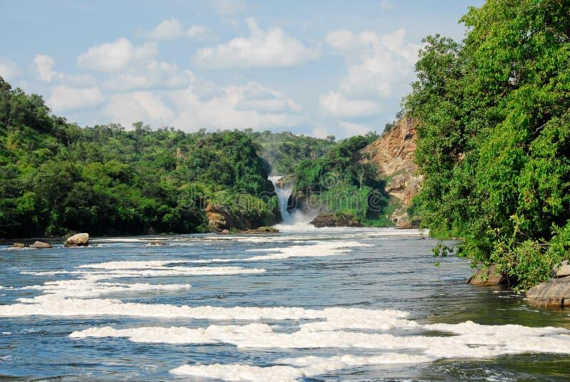 Murchison cai no Victoria Nile, Uganda imagens de stock