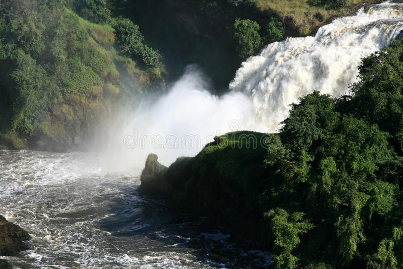 Murchison cai NP, Uganda, África fotos de stock royalty free