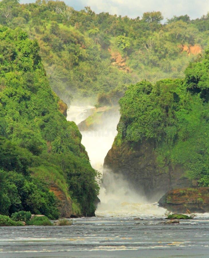 Murchison Falls de aproximação em Nile River imagens de stock royalty free