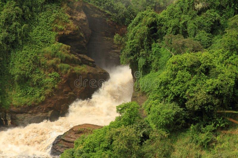 Murchison Falls de baixo de foto de stock