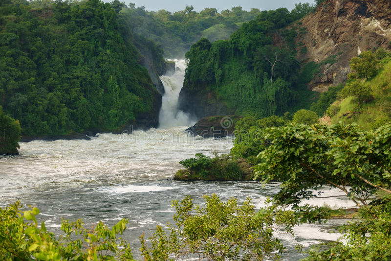 Murchison Falls em Uganda fotografia de stock royalty free