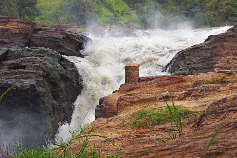 Murchison Falls i Afrika fotografering för bildbyråer