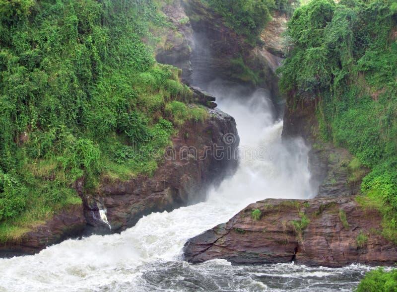 Murchison Falls whitewaterlandskap royaltyfria bilder
