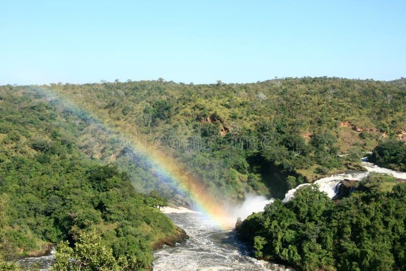 Murchison Spadać NP, Uganda, Afryka fotografia royalty free
