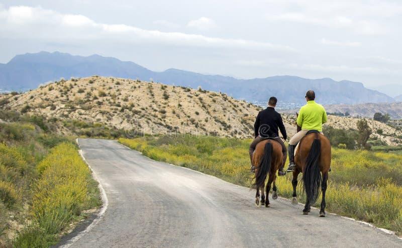 Murcia, Hiszpania, Kwiecień 18, 2019: Tylni widok dwa mężczyzny Jeździeckiego konia Wzdłuż drogi zdjęcia stock