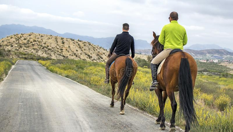Murcia, Spain, April 18, 2019: Rear view of two men Riding Horses Along a Road in the mountain. Activity equestrian rural woman country forest nature outdoor royalty free stock photos