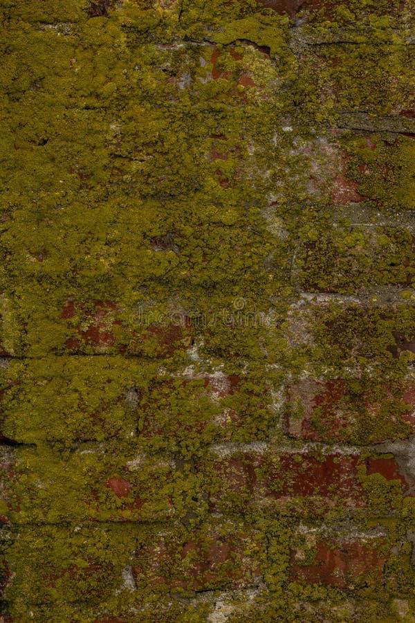 Muren van Karela-vesting royalty-vrije stock foto