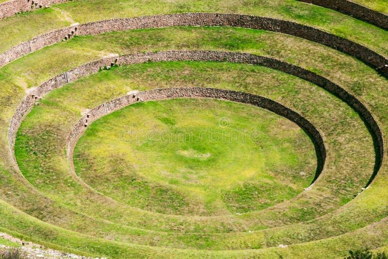 Mureny inka ruiny zdjęcie royalty free