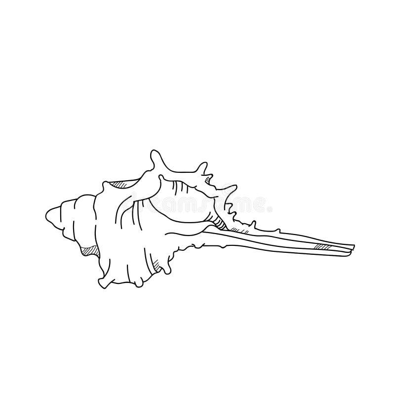 Murexshell tekening Hand getrokken zeeschelpillustratie stock illustratie