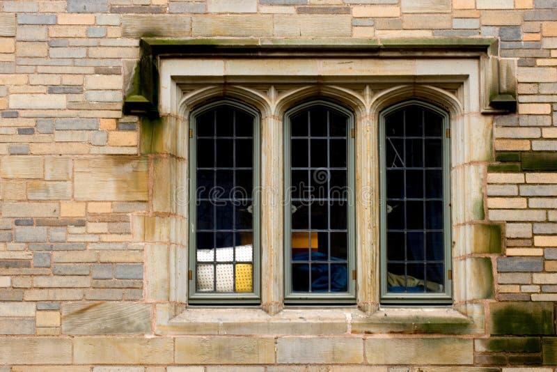 murgrönaligafönster arkivfoto