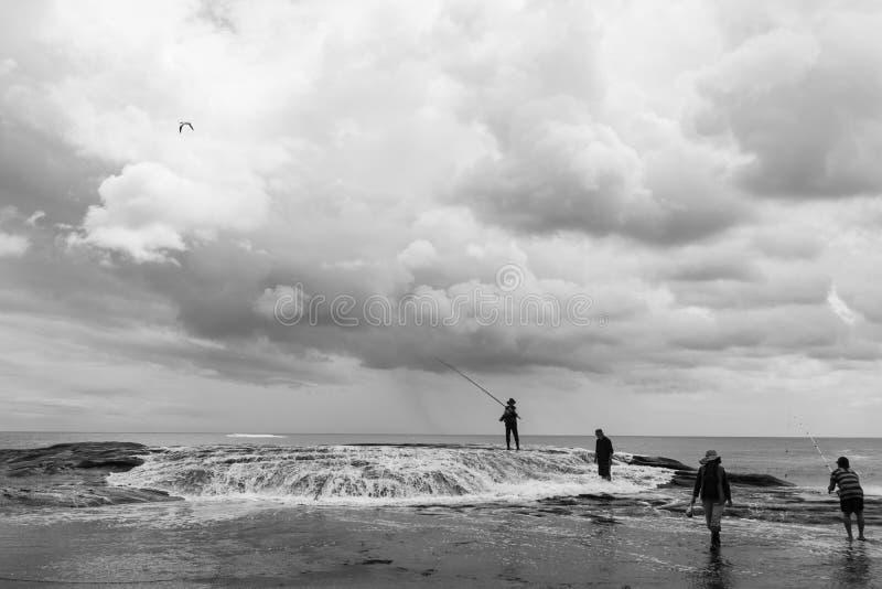 Muriwai海滩的渔夫 库存图片
