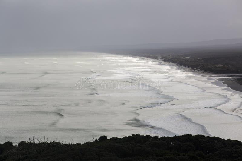 Download Muriwai Beach stock photo. Image of wave, coastal, surfing - 26628412