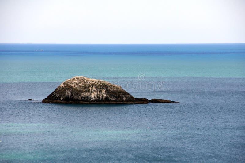 Muriwai strand på västkusten av den norr ön Nya Zeeland arkivfoto