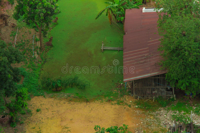 Murkey pond with bamboo hut and small dock in third world. Murkey pond with bamboo hut and small dock in third world view royalty free stock image