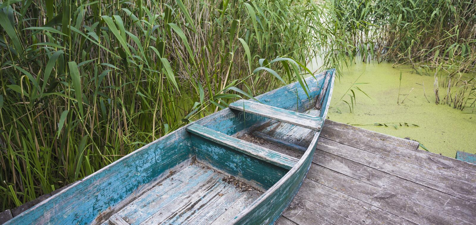 Murky autumn day with old wooden boat near the lake with duckweed and bulrush - calm and peaceful picture royalty free stock image