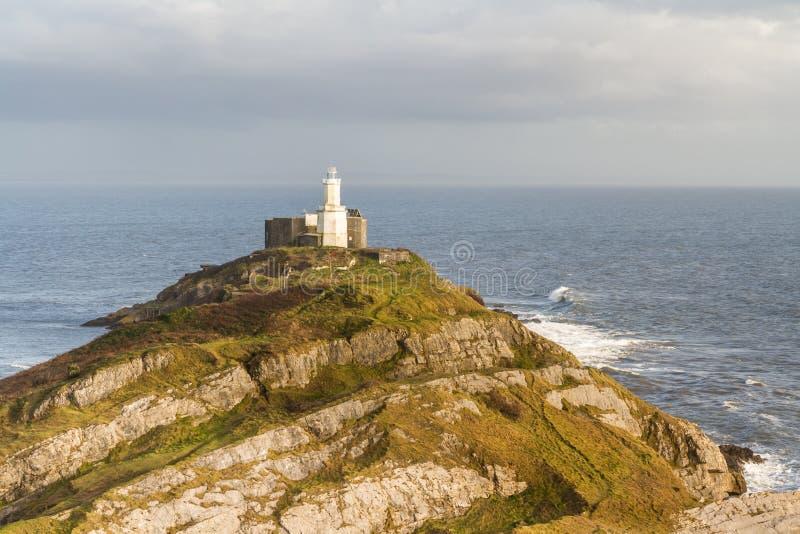 Murmelt und Leuchtturm vom clifftop lizenzfreies stockbild