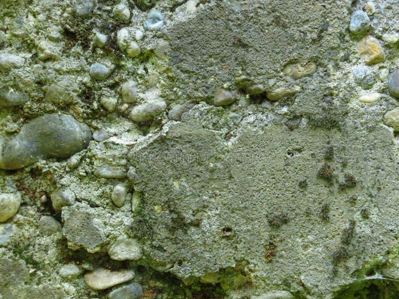 Muro de cimento arruinado muito velho do cimento A alvenaria rachada cobriu com o musgo imagem de stock
