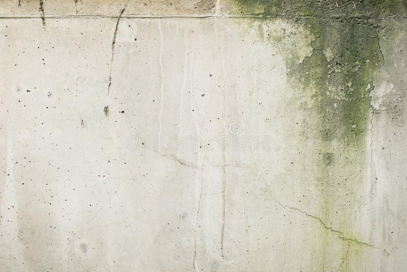 Muro de cimento mofado com quebras imagens de stock
