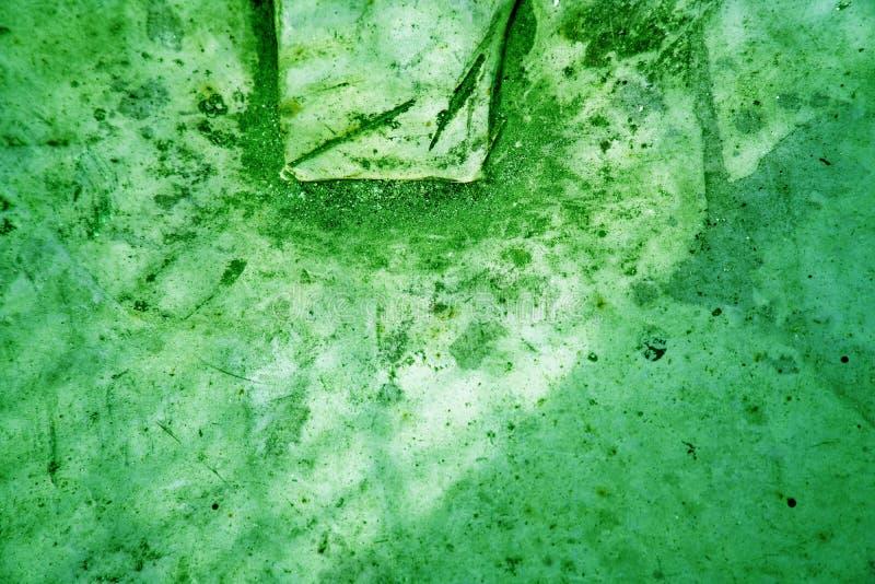 Muro de cimento pintado verde do quetzal, superfície de pedra imagens de stock