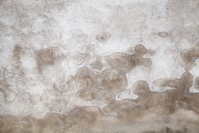 Muro di cemento grigio scuro con il modello bagnato fotografie stock libere da diritti