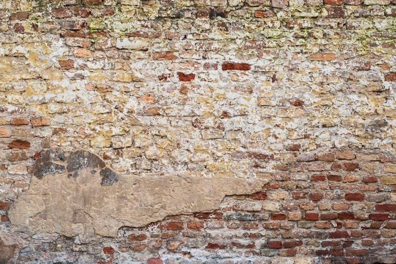 Muro di mattoni abbandonato variopinto fotografia stock