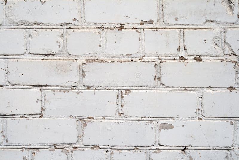 muro di mattoni bianco con la pittura della sbucciatura fotografia stock
