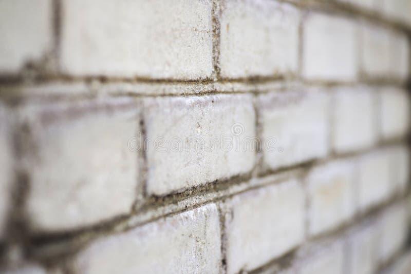 Muro di mattoni bianco con la prospettiva come fondo Struttura e struttura del muro di mattoni Vecchio fondo bianco del muro di m fotografie stock