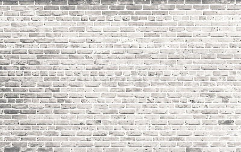 Muro di mattoni bianco Muro di mattoni bianco grungy semplice con il fondo grigio chiaro di struttura della superficie del modell fotografia stock libera da diritti