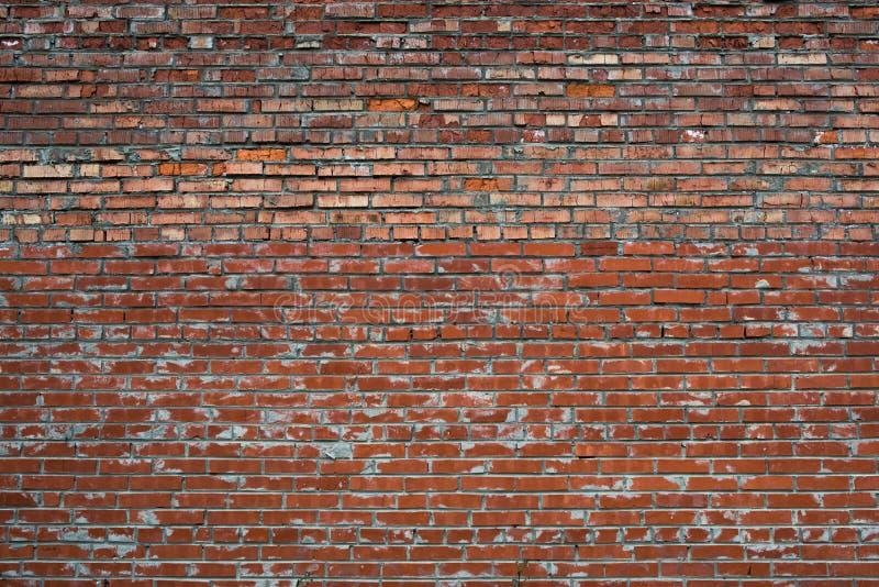 Muro di mattoni bianco incrinato rosso di lerciume strutturato immagine stock libera da diritti