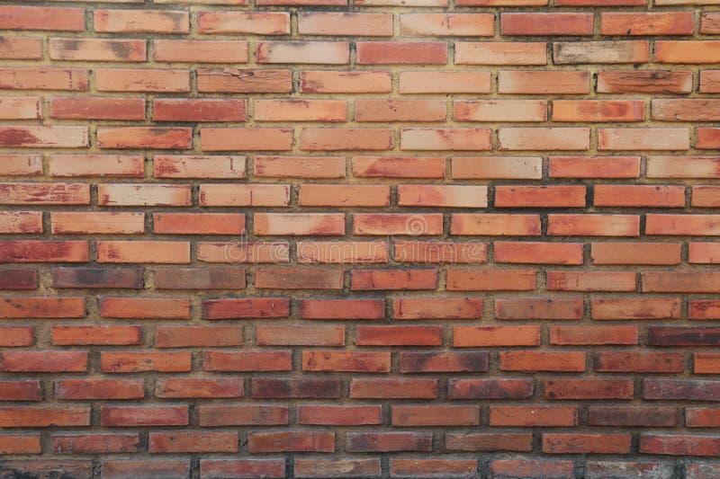 Muro di mattoni del fondo di struttura di colore rosso fotografia stock libera da diritti