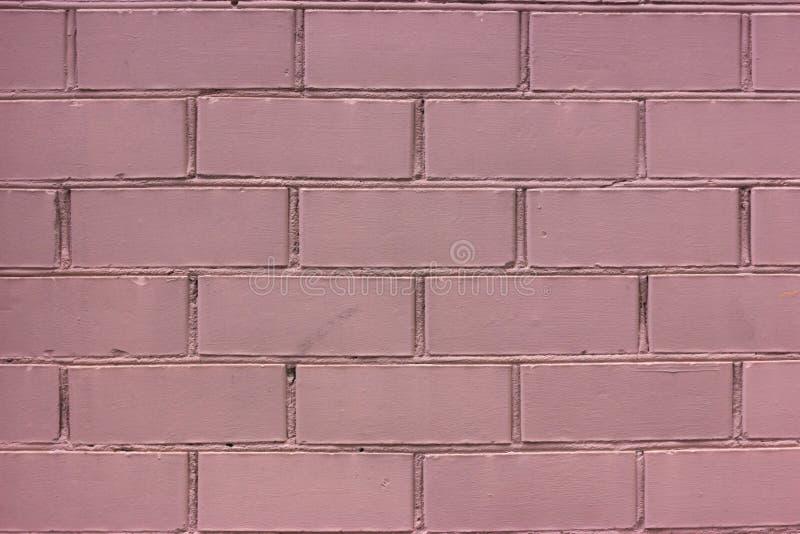Muro di mattoni dipinto rosa monocromatico fotografia stock