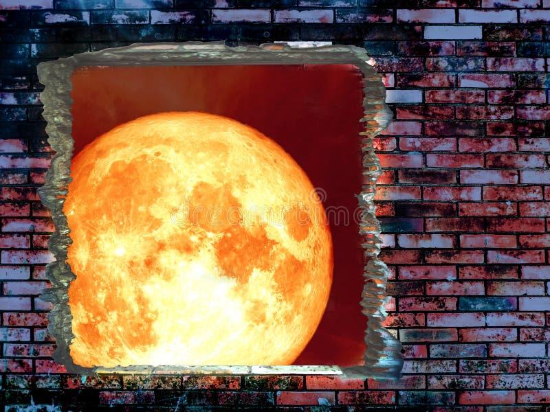 muro di mattoni eccellente della crepa della luna della razza pura immagine stock